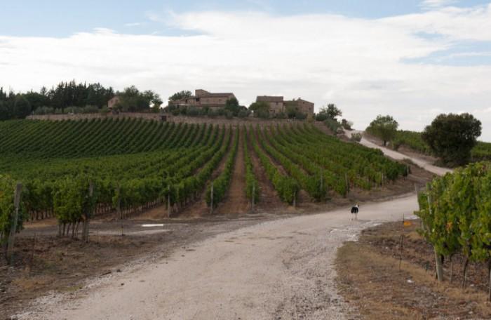 Wandelen in Toscane